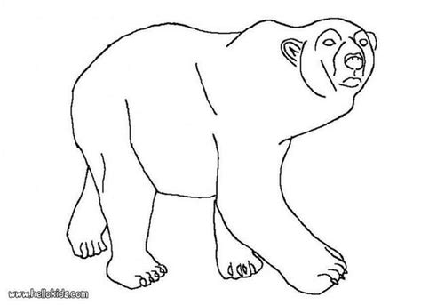 Polar Bear Coloring Pages Hellokids Com Animals Of The Arctic Coloring