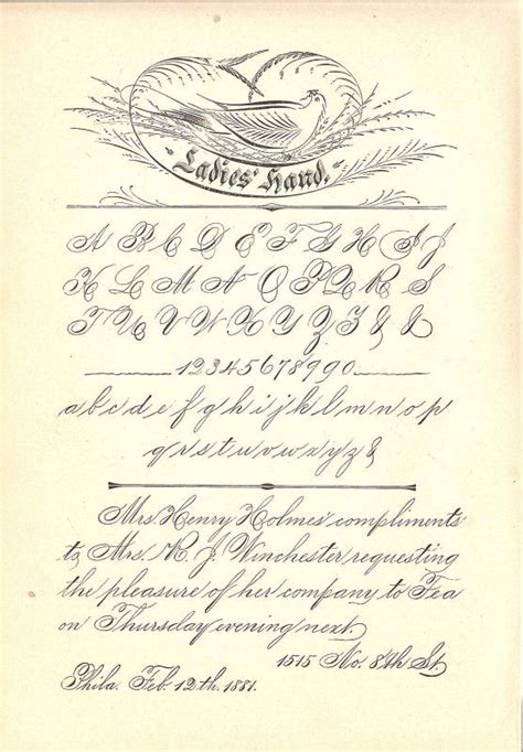 Spencerian Handwriting Worksheets by Spencerian Ladies Hand 02 Calligraphy Flourishes