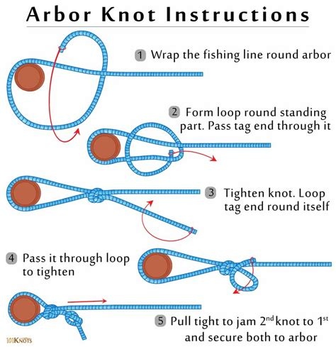 How To Tie Knots - how to tie an arbor knot 101 knots