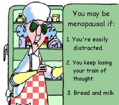 do dogs go through menopause best 25 menopause humor ideas on flashes humor when does menopause