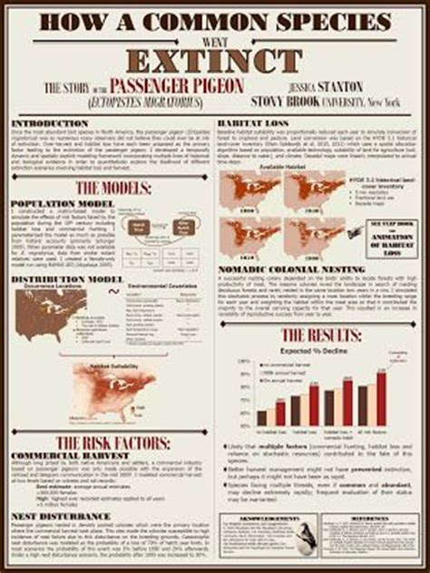 design poster academic 11 best research poster images on pinterest academic