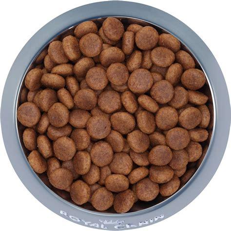 Lb Bag Maxi royal canin maxi food 35 lb bag chewy