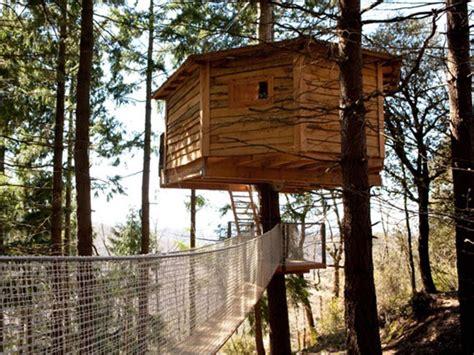 casa sull albero toscana dormire in una casetta sull albero casa albero