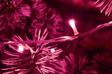 christmas celebrations west epping uniting church