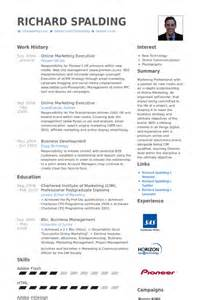 marketing executive resume sles visualcv
