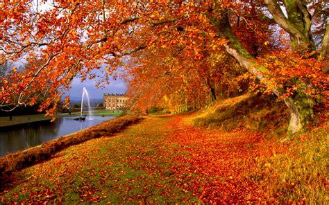 happy garden fall river autumn wallpaper background 38304