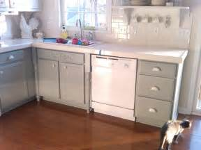 Cabinet Paint White by Interior Astounding Design Of White Kitchen Cabinets With