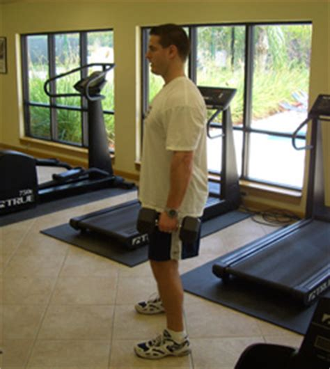 critical bench exercises dumbbell squat exercise