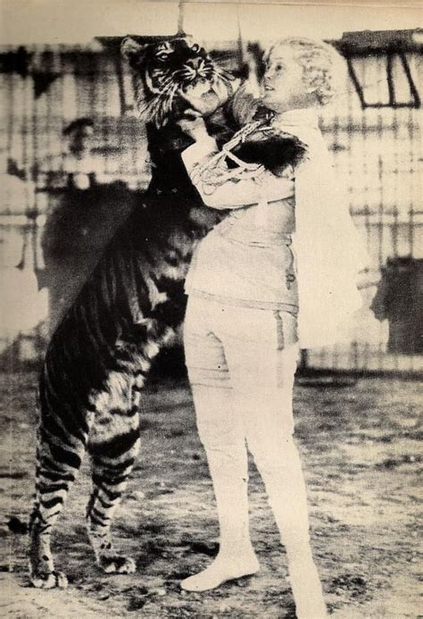 tiger 3 act a 44 best circus mabel stark images on big cats tigers and vintage circus