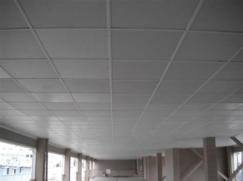 Garage Ceiling by Ceiling Grid Covers Photo Gallery