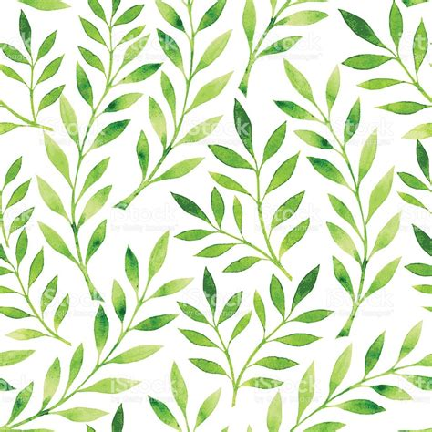 background pattern leaves a drawing of a pattern of green leaves on a white
