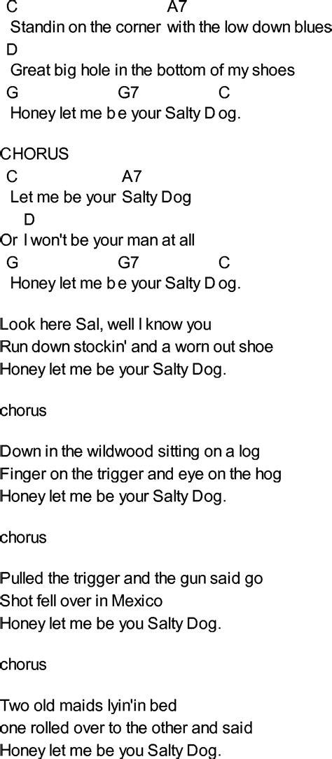puppy lyrics a salty song