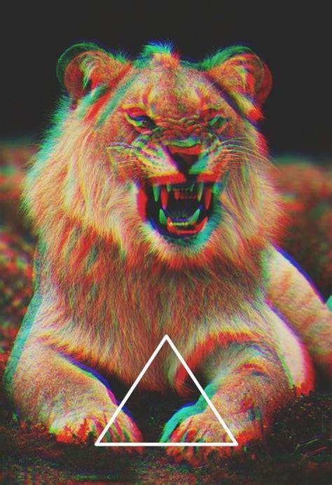 wallpaper 3d tumblr lion triangle power pinterest trippy devian art and