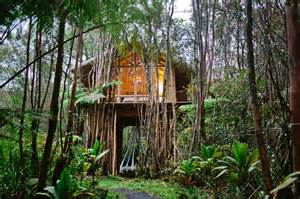 tropical treehouse vacation house crush an the grid hawaiian treehouse for a
