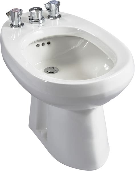 Fix Kitchen Faucet by 7603 Altima Bidet Briggs Plumbing