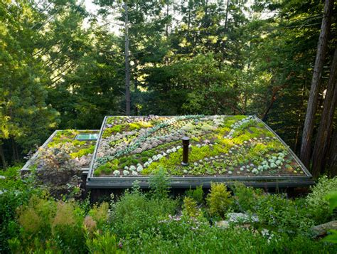 green roof feldman architecture mill valley cabins in san francisco