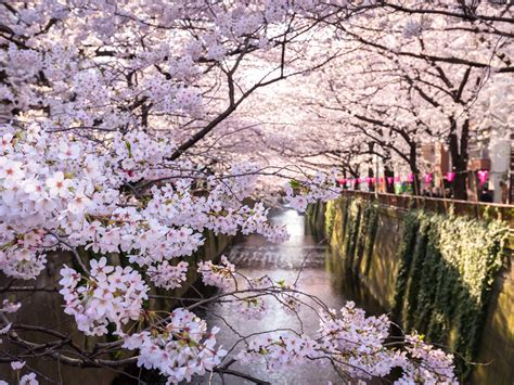 best places to travel in april photos cond 233 nast traveler