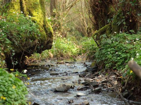 bureau valley martinique espaces naturels grimbosq for 234 t de grimbosq calvados