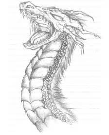 dragon head color coloring pages pinterest colors