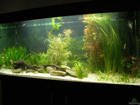 bd becken aquarium adamov becken 5133