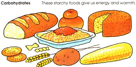 carbohydrates drawing carbohydrate food clipart