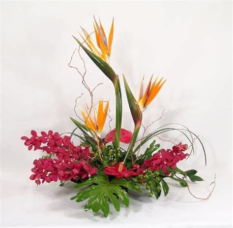 bird of paradise with anthurium and orchids centerpiece