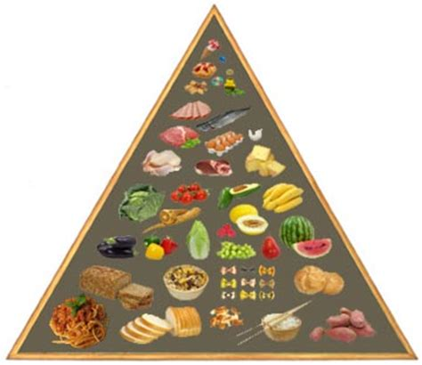 calcolo calorico degli alimenti gli alimenti con meno calorie ricette calorie e valori