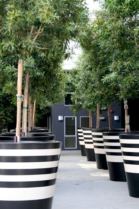 planters black and white and black on pinterest