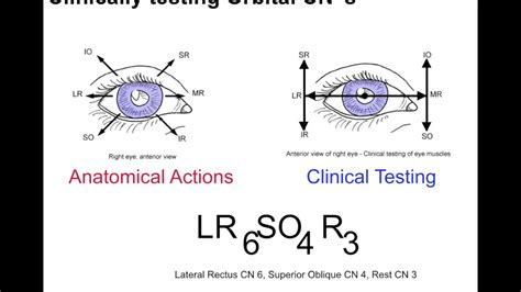 h pattern eye test clinical testing extraocular muscles tutorial youtube
