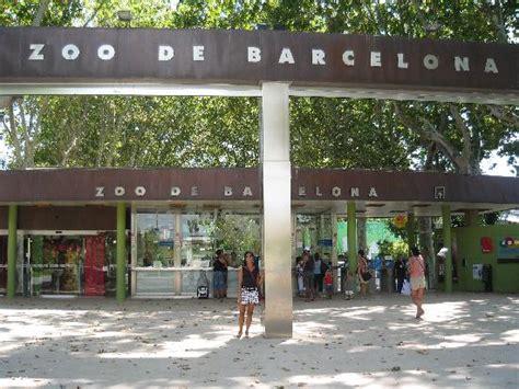 barcelona zoo zoo di barcelona picture of barcelona zoo barcelona