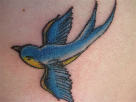 blue bird tattoo meaning sparrow tattoos sparrow designs ideas