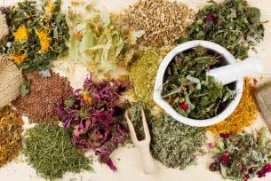6 ways to incorporate medicinal herbs into your daily routine