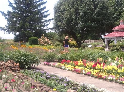 Rock Home Gardens Rockome Gardens Il Everything Pinterest