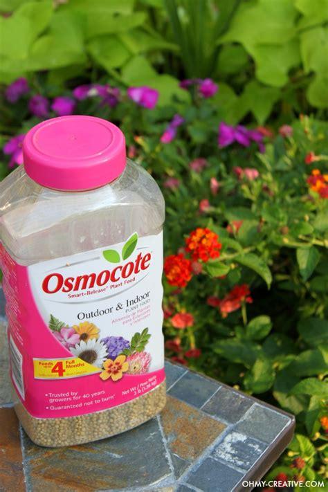 Best Fertilizer For Flower Garden How To Grow Beautiful Flowers Oh My Creative