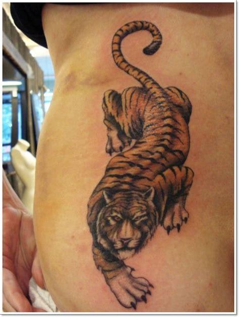 tiger stripe tattoo designs best 25 tiger stripe ideas on