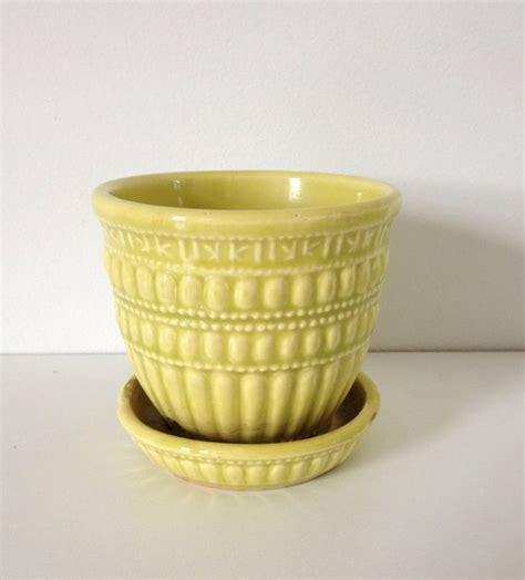 yellow pattern planter terrarium design outstanding yellow ceramic planter