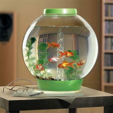 aquarium bowl design biorb self filtering aquarium the green head