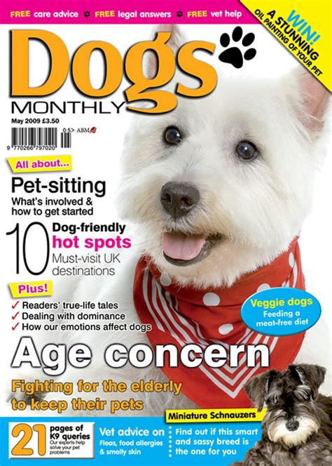 best age to get a puppy dogs monthly magazine may 2009 dogs monthly