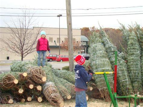 tree lighting in greensboro nc trees greensboro nc lights decoration