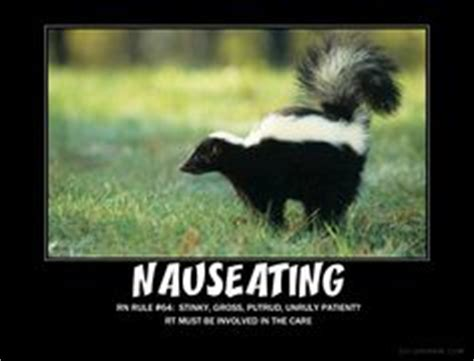 Skunk Meme - respiratory therapy dog meme related keywords