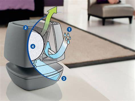 Humidité Dans Une Maison 1280 uhu combattre l humidite et eliminer la moisissure