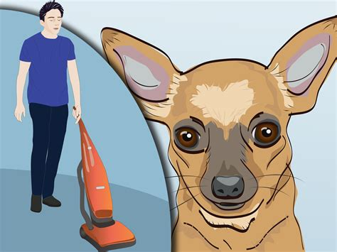 how to keep ticks dogs how to keep ticks from your dogs 8 steps with pictures