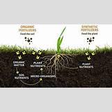 Chemical Fertilizers Npk   1600 x 900 jpeg 251kB