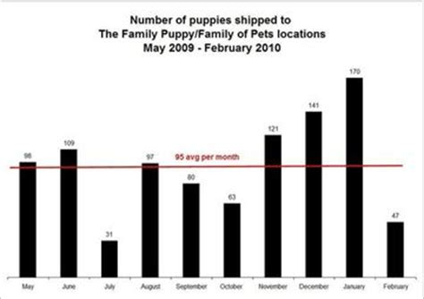 Stores That Sell Calendars The Importance Of Pet Store Protests Puppy Mill