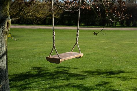 to swing or not to swing classic tree swing mr woodcraft