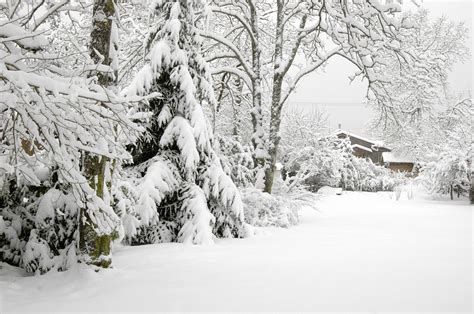 when to remove snow from your yard turf unlimited