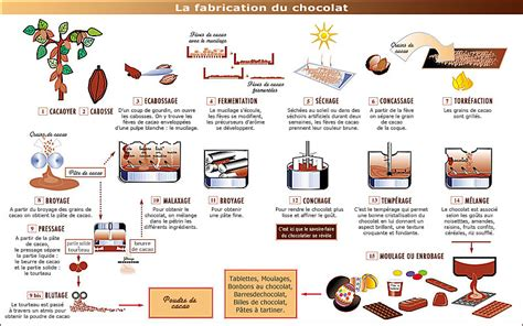 diagramme fabrication chocolat la gourmandise du cacau ludivine
