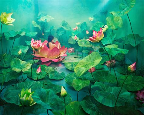 beautiful art pictures beautiful art works by jeeyoung lee incredible snaps