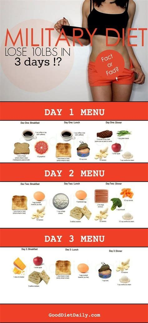 Detox Diet Lose 10lb In 3 Days by 17 Best Ideas About 3day Diet On 3