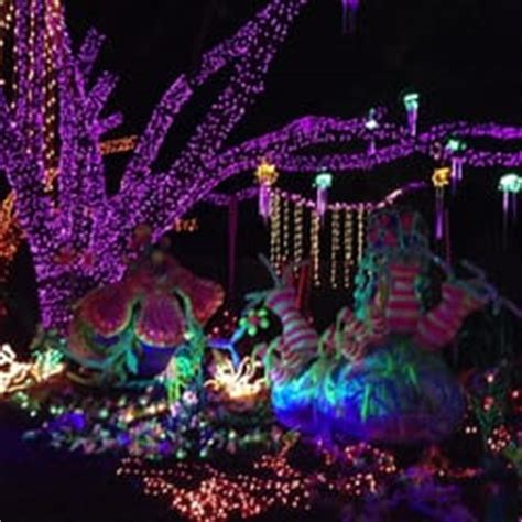 Lights In Hermann Park by Zoo Lights Temp Closed 88 Photos 55 Reviews